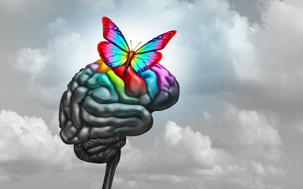 Read more about the article On the Autism Spectrum : Elon Musk, Movie Stars and a Nobel Laureate